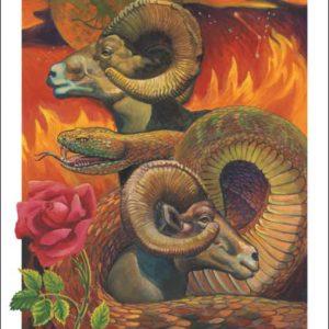 Snake-Aries Fine Art Print