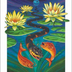 Snake-Pisces Fine Art Print