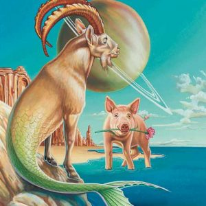 Pig-Capricorn Fine Art Print