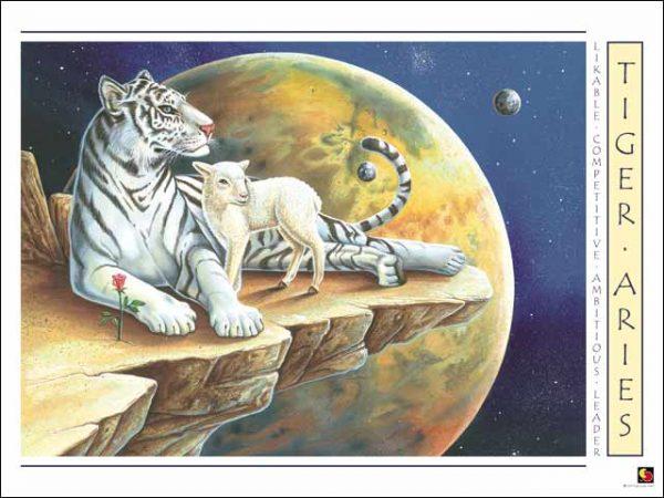 Tiger-Aries Poster
