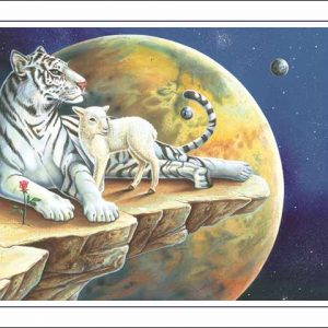 Tiger-Aries CARD