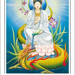 Dragon-Aquarius CARD