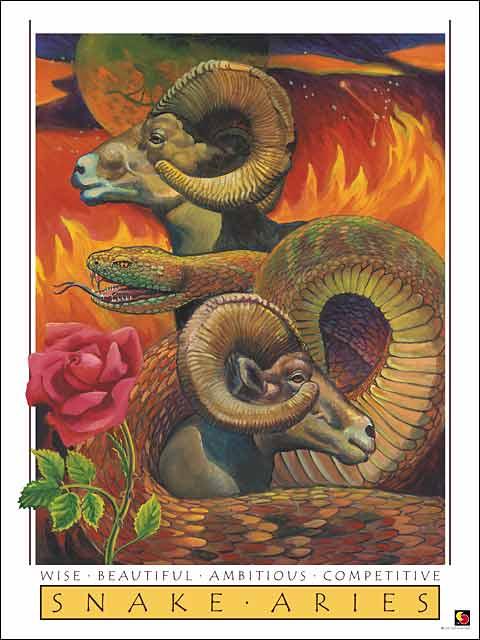 Snake-Aries Poster