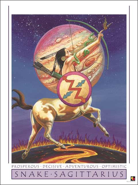 Snake-Sagittarius Poster