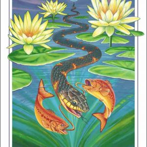 Snake-Pisces Poster