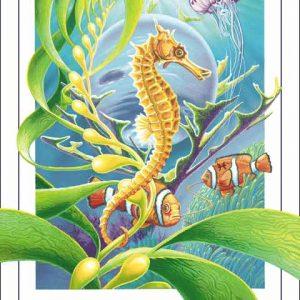 Horse-Pisces CARD