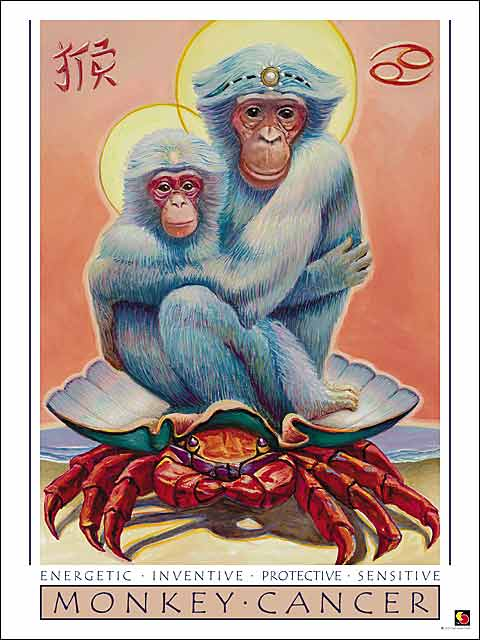 Monkey-Cancer Poster