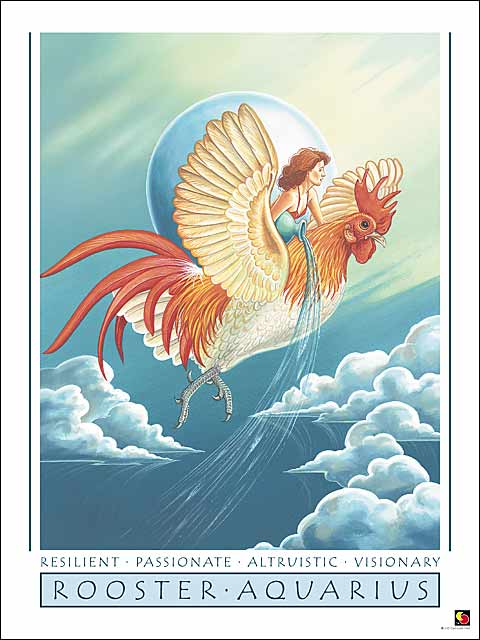 Rooster-Aquarius Poster