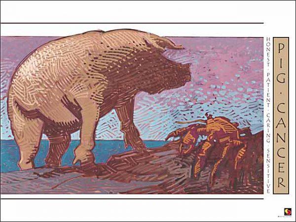 Pig-Cancer Poster