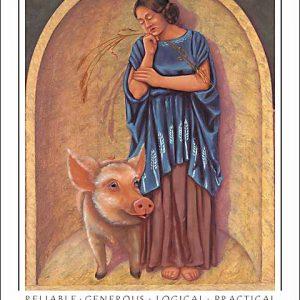 Pig-Virgo CARD