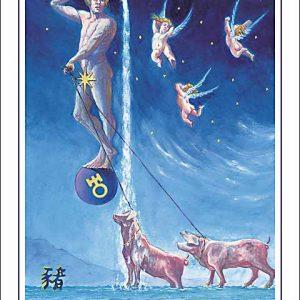 Pig-Aquarius Poster