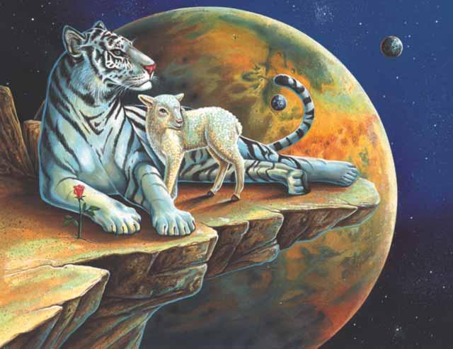 Tiger Aries